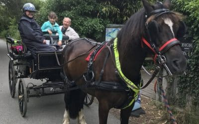Carriage Drives with Murray and Robert