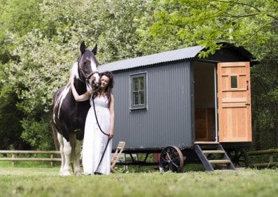 Shep hut 2