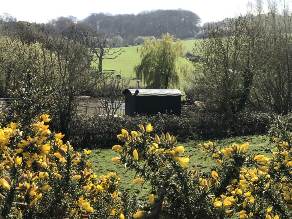 Surroundings of shepherd's hut